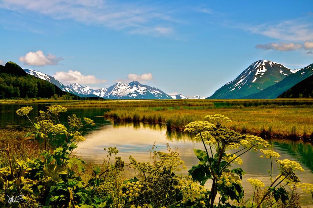 Alaska Watershed DSC_0308.jpg