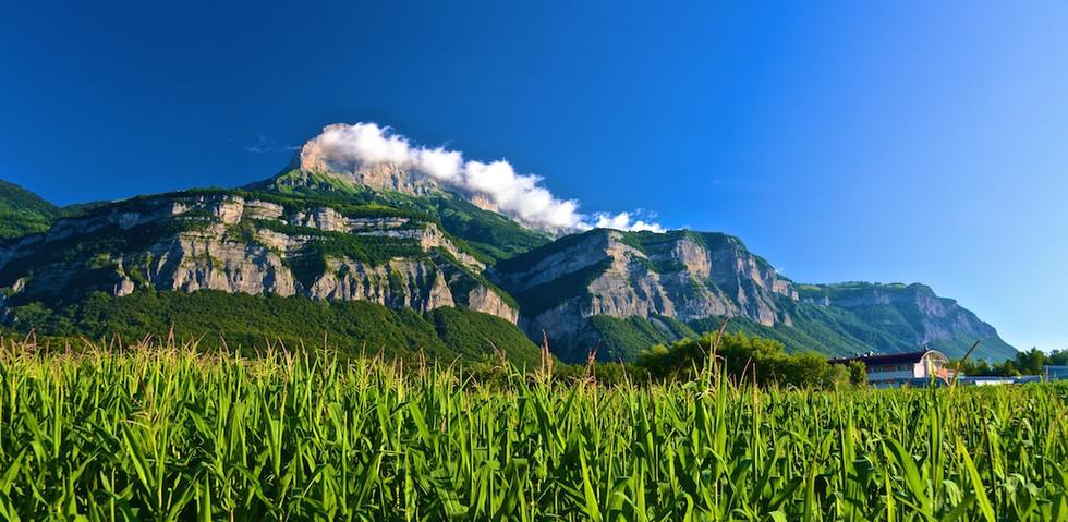 Grenoble Mountainside DSC_3114.jpg