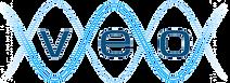 VEO Logo2.png
