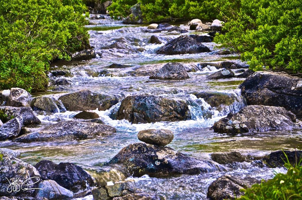 Alaskan Stream  DSC_0211.jpg