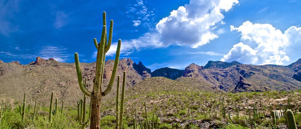 AZ Weatherman 2 DSC_3667.jpg