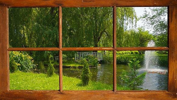 Вид из окна на красивый летний пруд с утками в парке