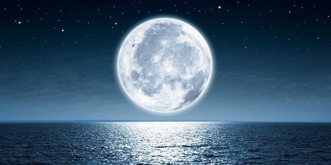 Фотообои. Фрески. Картины. Огромная полная Луна. Ночной океан. Звездное небо