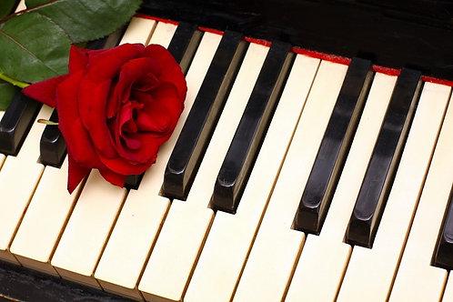 Темно-красная роза на клавишах пианино