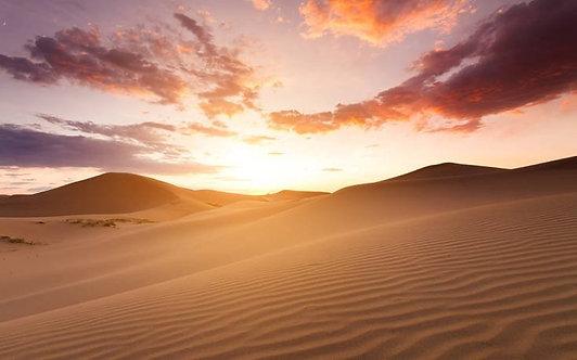 Фотообои. Фрески. Картины. Песчаные дюны. Закат. Пустыня Сахара. Африка. Пейзаж