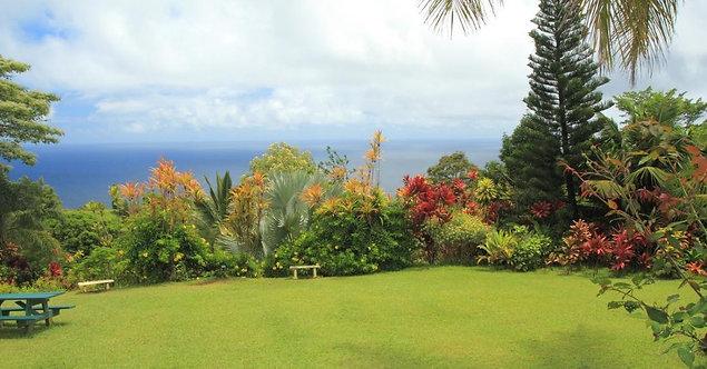 Фотообои. Фрески. Картины. Райский сад. Море. Природа и пейзажи. Сады и парки