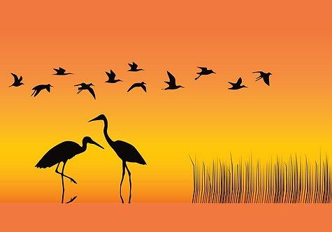 Силуэты аистов на фоне оранжевого неба. Графика