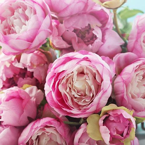 Розовые пионы крупным планом