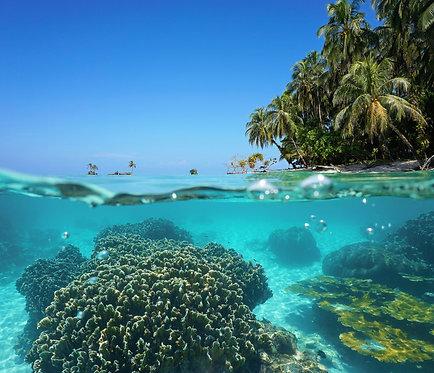 Изображение над и под поверхностью моря у тропического острова
