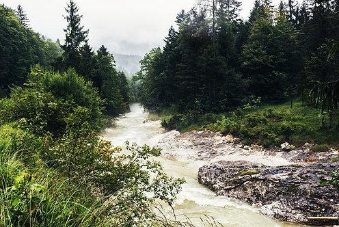 Быстрый речной поток и горный лес в дождливый день