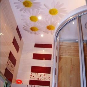 stretch-ceilings-bathroom-photo-printing