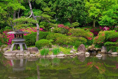 Фотообои. Фрески. Картины. Японский сад. Озеро. Камни. Природа. Осака