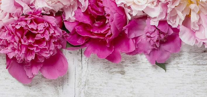 Розовые пионы на белом деревянном фоне
