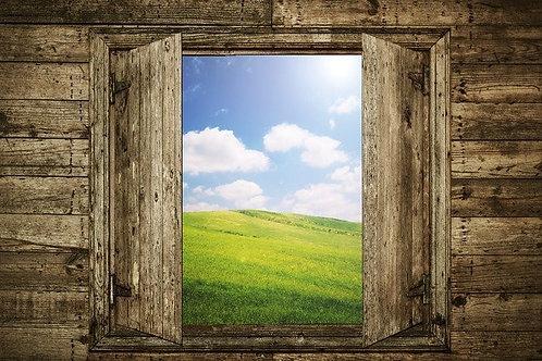 Вид из окна с распахнутыми деревянными ставнями на зеленое поле