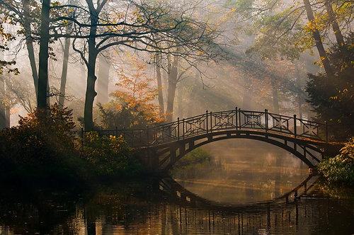 Старый мост в туманном осеннем парке