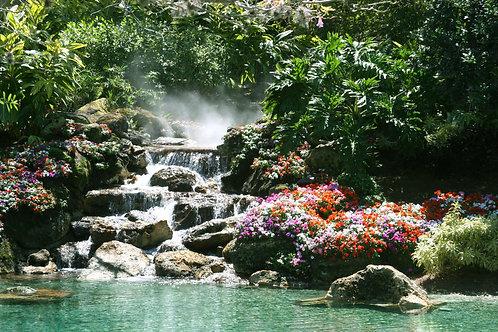 Водопад в красивом тропическом саду