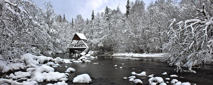 Русский зимний пейзаж с лесом и озером