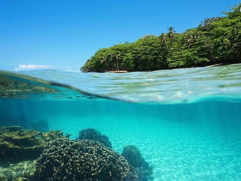 Изображение над и под поверхностью моря с тропическим островом
