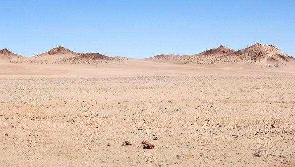Фотообои. Фрески. Картины. Пустыня. Намибия. Природа. Пейзаж