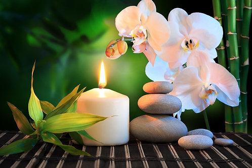 Белая орхидея и камни на зеленом фоне с бамбуком