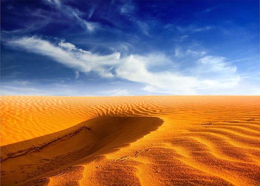 Фотообои. Фрески. Картины. Пустыня. Песчаные дюны. Барханы. Природа. Пейзаж
