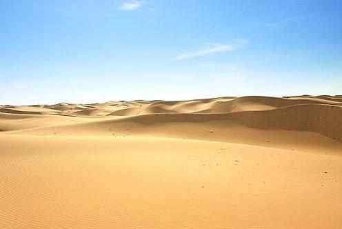 Фотообои. Фрески. Картины. Пустыня. Песчаные дюны. Голубое небо. Природа. Пейзаж
