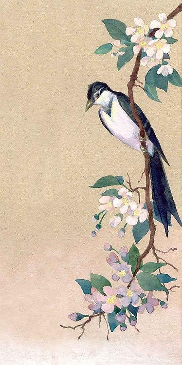 Птица на ветке яблони. Акварель в китайском стиле