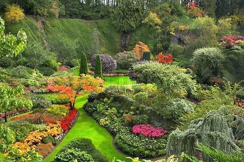 Фотообои. Фрески. Картины. Цветы. Деревья. Природа и пейзажи. Сады и парки