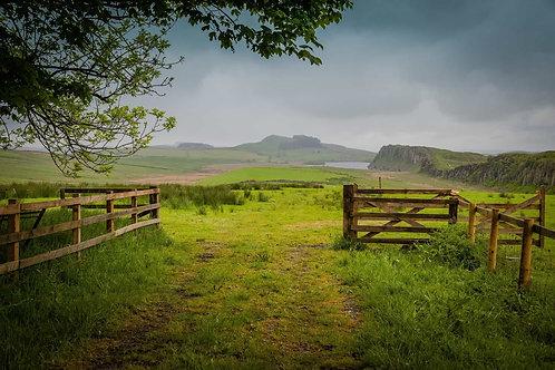 Зеленые луга и холмы вдоль вала Адриана в Великобритании
