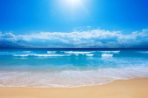 Великолепный пляж под ясным небом