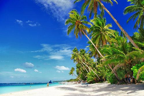 Белый песчаный тропический пляж с пальмами