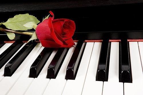 Красная роза на клавиатуре пианино