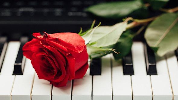 Красная роза крупным планом на клавишах пианино