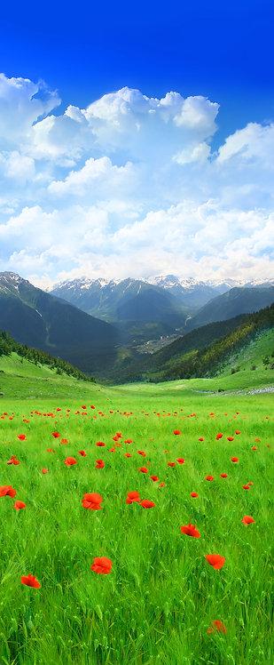 Зеленое поле с красными маками в горах