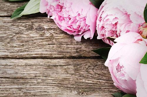 Розовые пионы на старых деревянных досках