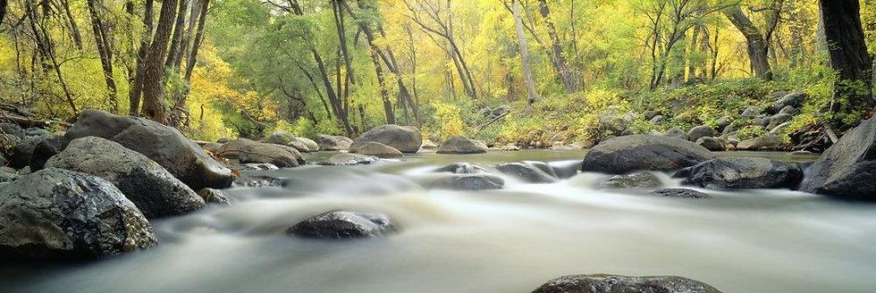 Горный поток в лесу каньонов Седоны - Аризона