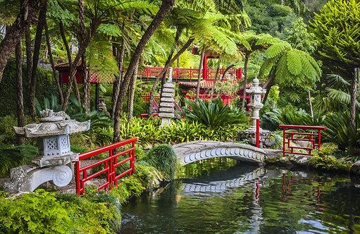 Фотообои. Фрески. Картины. Monte Palace Tropical Garden. Японский сад. Пруд