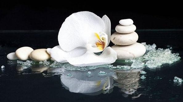 Камни с белым цветком орхидеи на черном фоне