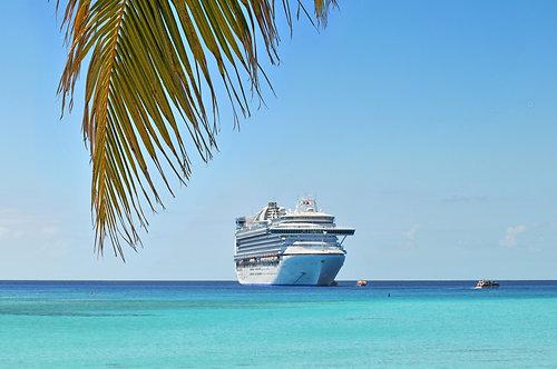 Пальмовая ветвь на фоне круизного лайнера на тропическом острове