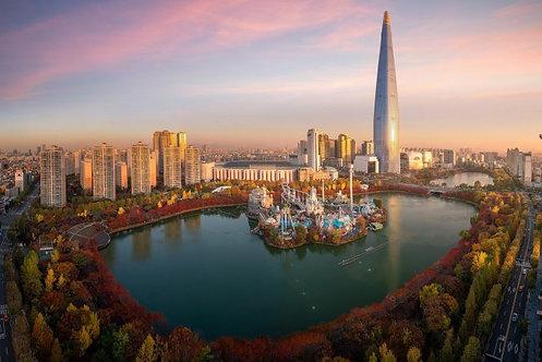 Фотообои. Фрески. Картины. Башня. Осенний парк. Сеул. Корея. Природа и пейзажи