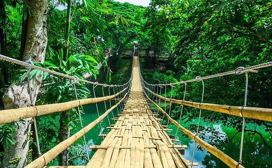 Бамбуковый висячий мост через реку в тропическом лесу в Филиппинах