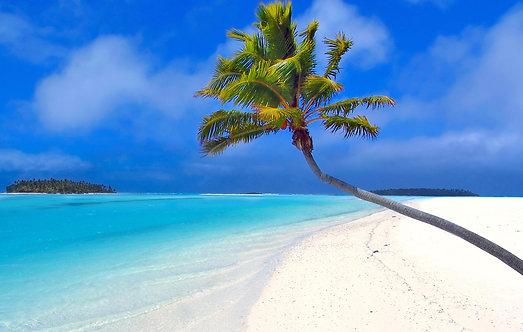 Кокосовая пальма на фоне синего неба и лазурного моря