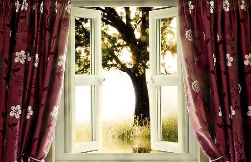 Вид из открытого окна со шторами на дерево в саду