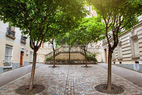 Фотообои. Фрески. Картины. Зеленые деревья. Мостовая. Улица Монмартр. Париж