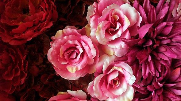 Розовые и красные розы в виде цветочного фона
