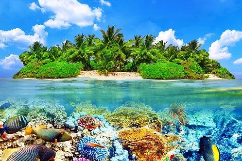 Тропический остров и подводный мир на Мальдивах