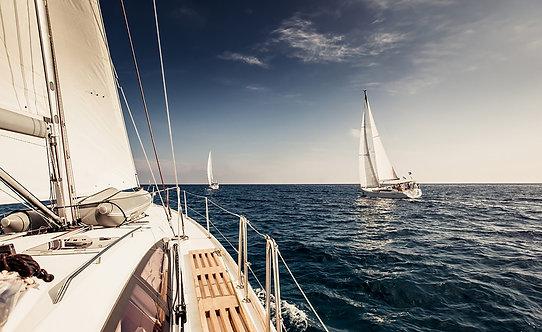 Парусные яхты с белыми парусами в открытом море
