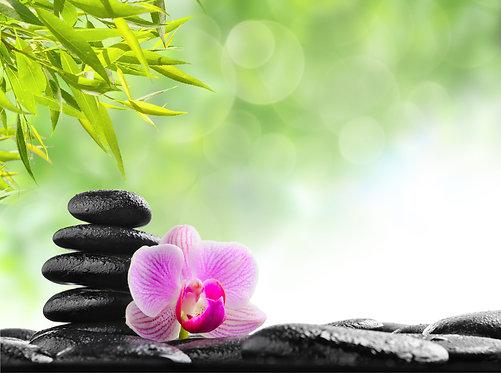 Черные базальтовые камни с росой и цветок фиолетовой орхидеи