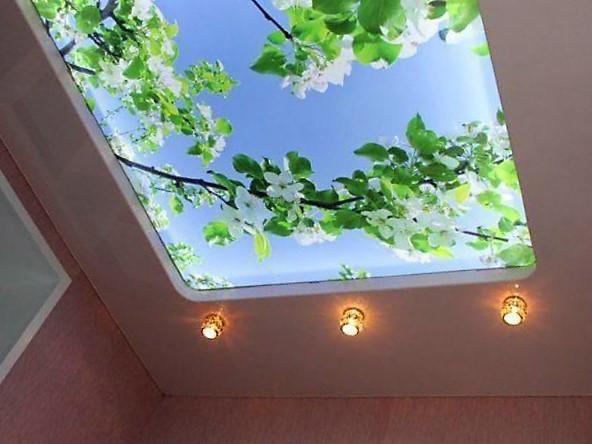 stretch-ceilings-translucent-sky-apple-t