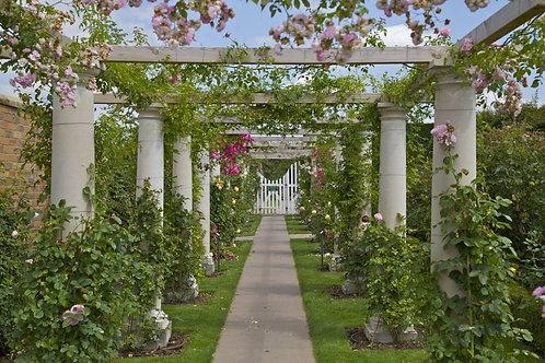Фотообои. Фрески. Картины. Беседка с розами. Садовая дорожка. Колонны. Калитка